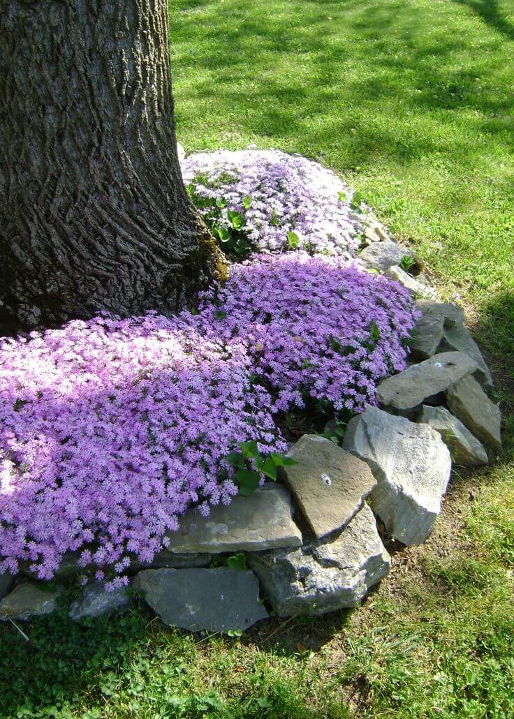 30+ Amazing DIY Front Yard Landscaping Ideas and Designs ...